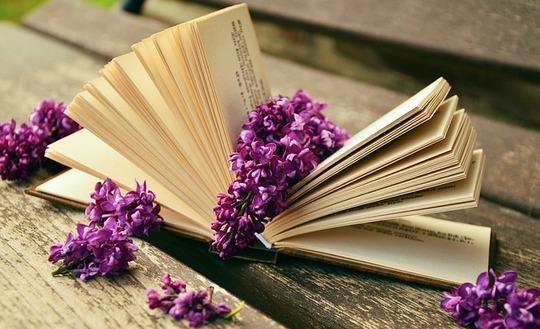 Дружба литератур — дружба народов
